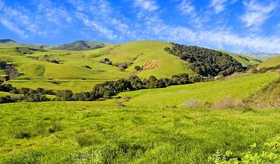 Green Meadow Santa Ynez Valley Ca Poster by Eyal Nahmias