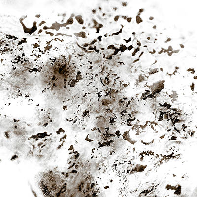 Grey Moss Abstract Poster by Frank Tschakert