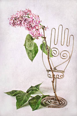 Hand Holding Lilac Branch Poster by Vicki McLead