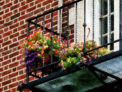 Hanging Basket On Fire Escape Poster by Susan Savad