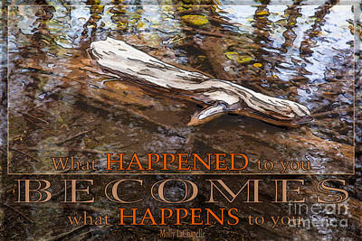 Happenings Abstract Motivational Artwork By Omashte Poster by Omaste Witkowski