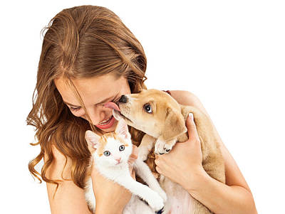 Happy Girl With Kitten And Affectionate Puppy Poster by Susan Schmitz