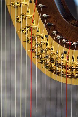 Harp Strings Poster by Marco Oliveira