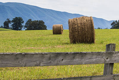 Hay Bale  Poster by Lisa Lemmons-Powers