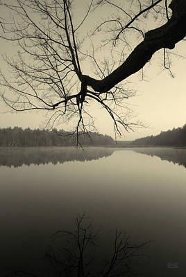 Hewitt Pond No. 2 - Vertical Poster by David Gordon