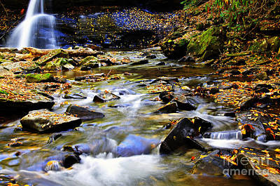 Holly River Fall Poster by Thomas R Fletcher