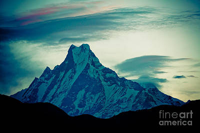 Holy Mount Fish Tail Machhapuchare 6998m Poster by Raimond Klavins