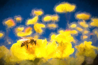 Honey Bee Mountain Daisy Impressionism Study 1 Poster by Scott Campbell