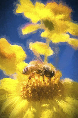 Honey Bee Mountain Daisy Impressionism Study 3 Poster by Scott Campbell