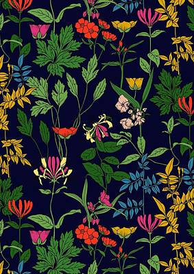 Honeysuckle Floral Poster by Sholto Drumlanrig