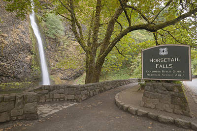 Horsetail Falls Columbia River Gorge Oregon. Poster by Gino Rigucci