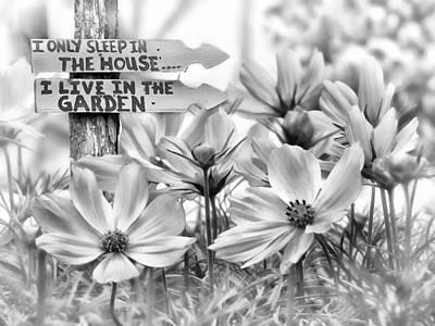 I Live In The Garden-2 Poster by Nina Bradica