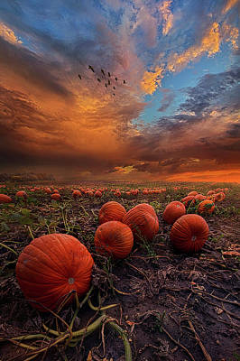 In Search Of The Great Pumpkin Poster by Phil Koch