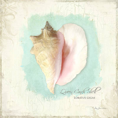 Inspired Coast Viii - Queen Conch Shell On Board Poster by Audrey Jeanne Roberts