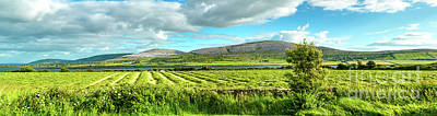 Ireland  - Burren Panorama Poster by Juergen Klust