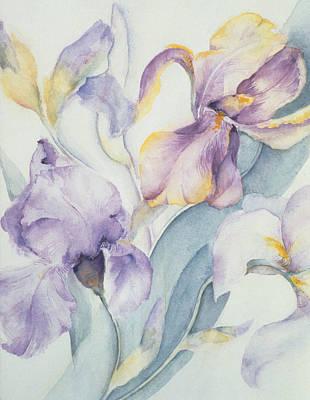 Iris Poster by Karen Armitage