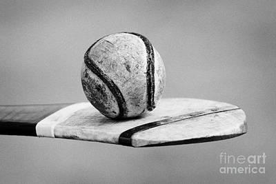 Irish Hurling Ball And Stick Poster by Joe Fox