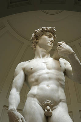 Italy, Florence, Statue Of David Poster by Sisse Brimberg & Cotton Coulson