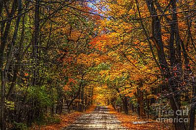 Its A Michigan Fall Poster by Robert Pearson