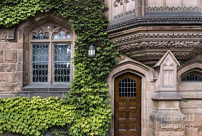 Ivy League Princeton Poster by John Greim