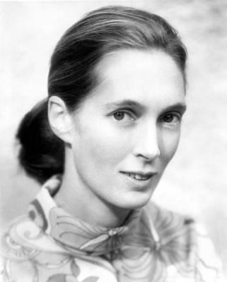 Jane Goodall Poster by Everett