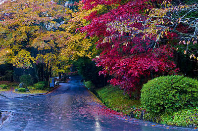 Japanese Autumn Poster by Kobby Dagan