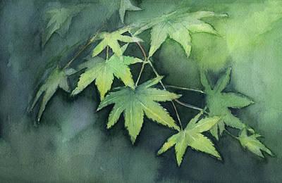 Japanese Maple  Poster by Olga Shvartsur