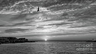 Jersey Shore Sunset In Black And White Poster by Jeff Breiman