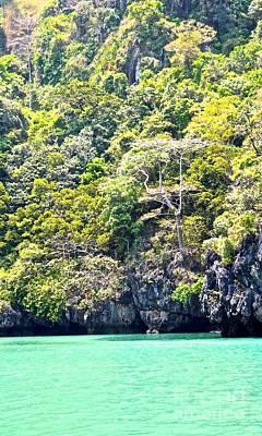 Jungle Meets Sea Poster by Caroline Benson