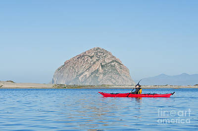 Kayaker In Morro Bay Poster by Bill Brennan - Printscapes