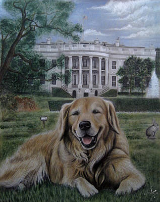 Kelli On The White House Lawn Poster by Jonathan Anderson