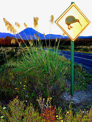 Kiwi Crossing Poster by Kevin Smith