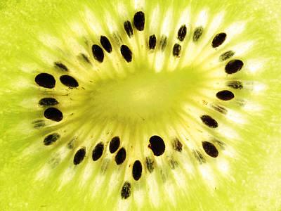 Kiwi Fruit Poster by Paul Ge