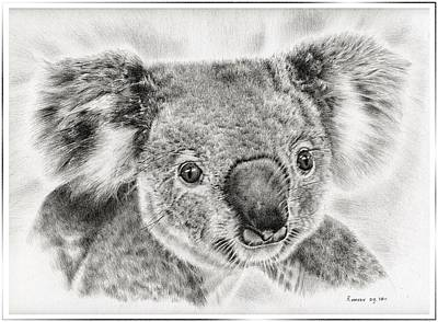 Koala Newport Bridge Gloria Poster by Remrov Vormer