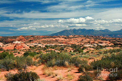 La Sal Mountains, Moab Utah, Usa Poster by Corey Ford