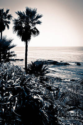 Laguna Beach California Black And White Poster by Paul Velgos