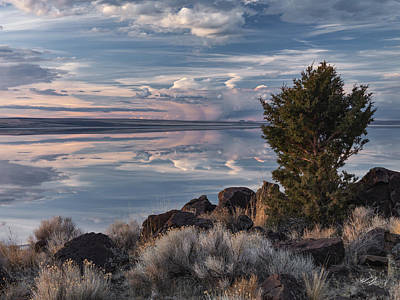 Lake Abert 8 Poster by Leland D Howard