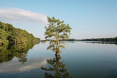 Lake Providence Louisiana Poster by Scott Pellegrin
