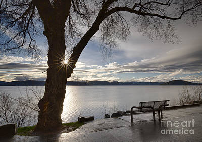 Lake View Poster by Idaho Scenic Images Linda Lantzy