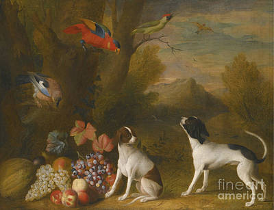 Landscape With Exotic Birds Poster by Jakob