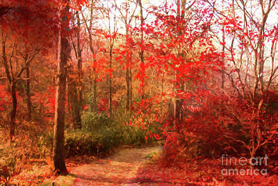 Last Color Of Fall Poster by Geraldine DeBoer