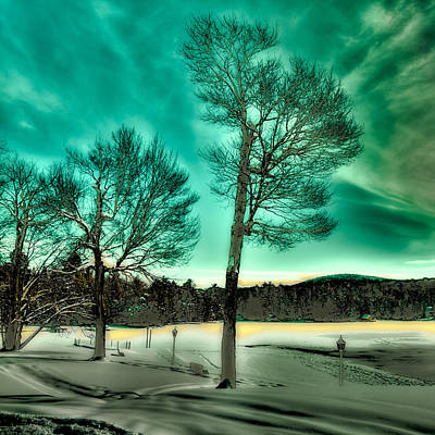 Late Sun On Old Forge Pond Poster by David Patterson