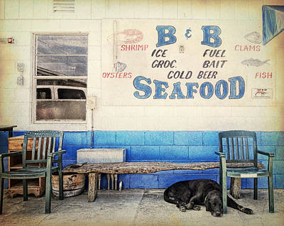 Lazy Dog Poster by Ron Schiller
