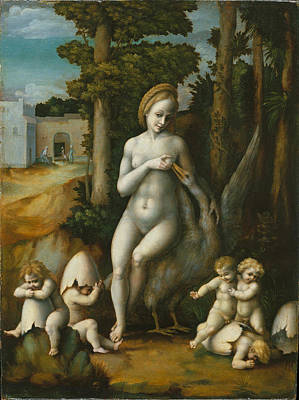 Leda And The Swan Poster by Bacchiacca