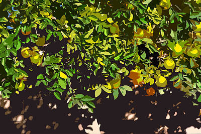 Lemon Tree Very Wally Poster by Stan  Magnan