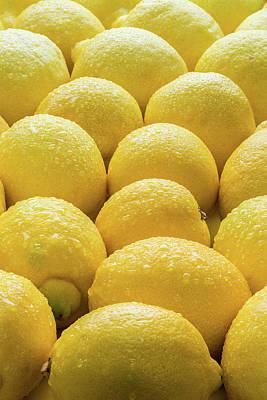 Lemons Lemons Lemons Poster by Steve Gadomski