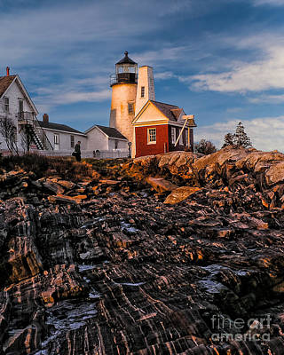 Light At Pemaquid Point Poster by Nick Zelinsky