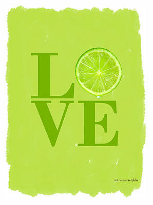 Lime Poster by Mark Rogan