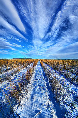 Line Of Sight Poster by Phil Koch