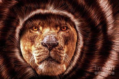 Lion Lady   -2 Poster by Prarthana Kulasekara